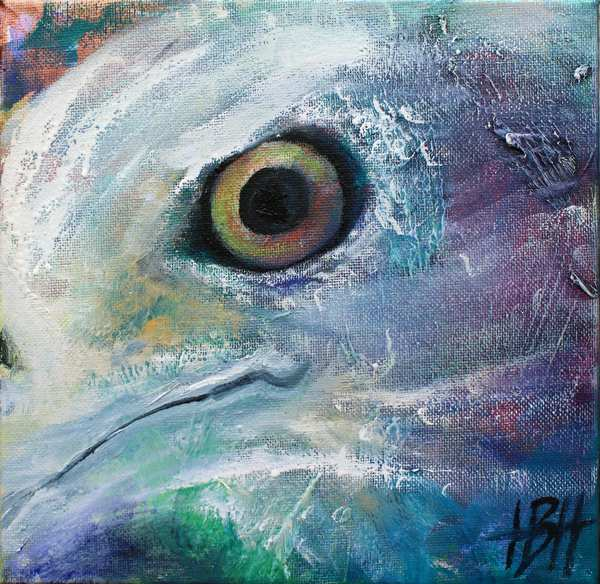 Lille maleri af ørnens øje, som kigger ud af maleriet