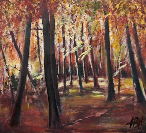 skov maleri med lys. Det specielle sidelys i skoven og meget kontrast