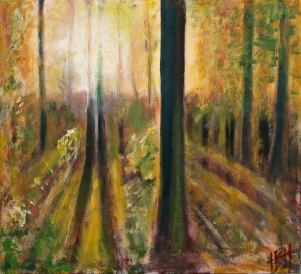 Natur maleri af modlys i skoven