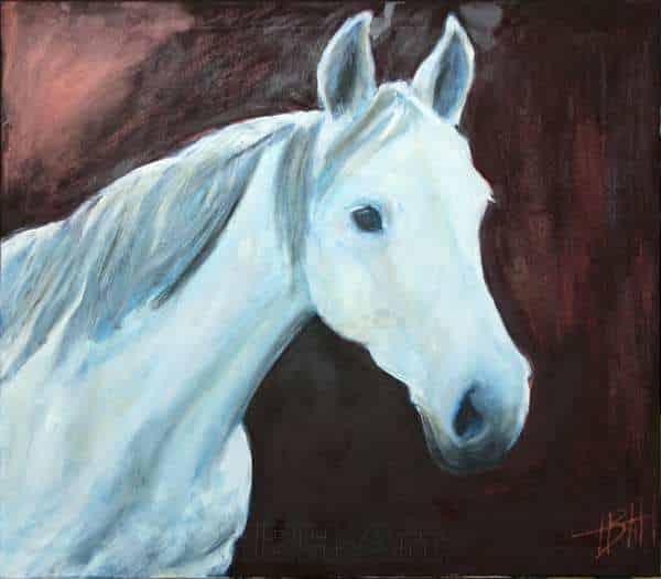 Hesteportræt af hvid araberhoppe. Baggrunden er sort med bronze-skær