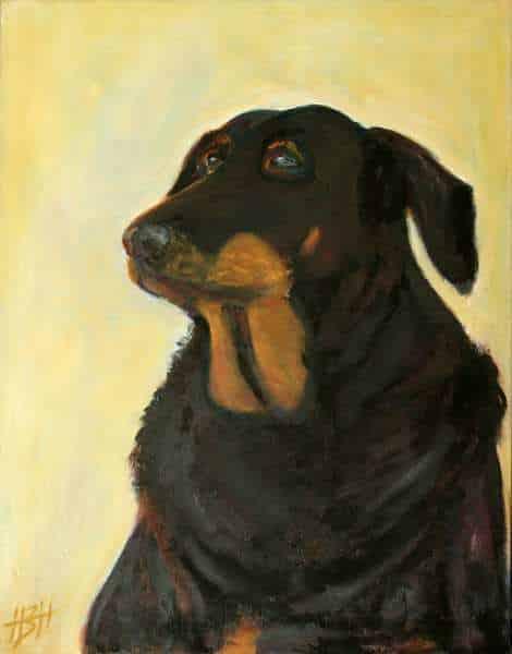 Hundeportræt af hunden Luna, som er sort med brunt