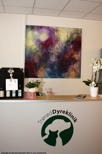 Kunst på væggen i dyrlægeklinik. Stort maleri i receptionen