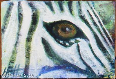 Artmoney med zebraøje
