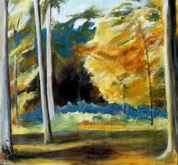 natur maleri fra skoven i efterårsfarver. Skovens mørke dyb står i kontrast til den lysende gyldne trækrone