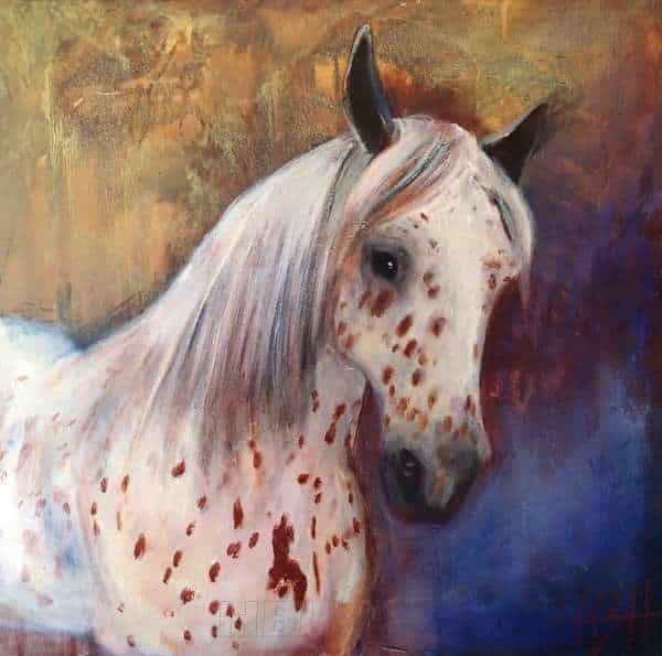 hesteportræt af Knabstrupper