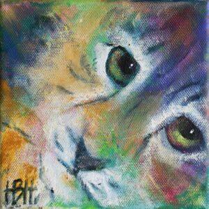 Lille maleri af kat med stærke øjne, der kigger på dig