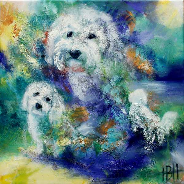 portræt af bomuldshunden Max. Max elsker vand, så baggrunden er malet i blålige farver som vand