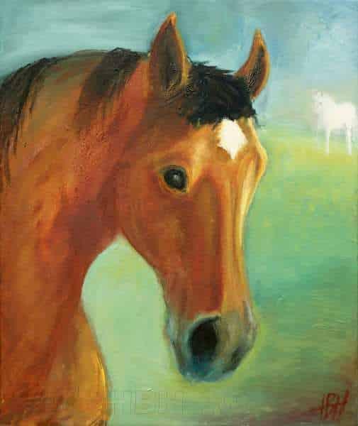 Hesteportræt af hesten Nicole - en brun hoppe. Dens ven en hvid araber ses i baggrunden