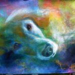 portræt af healerhunden snooby. Dan kigger direkte ud på dig