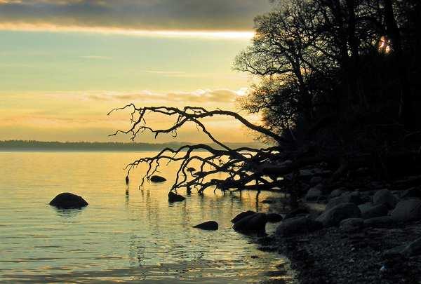 fotografi af vandet ved Kongsøre. Printet på lærred