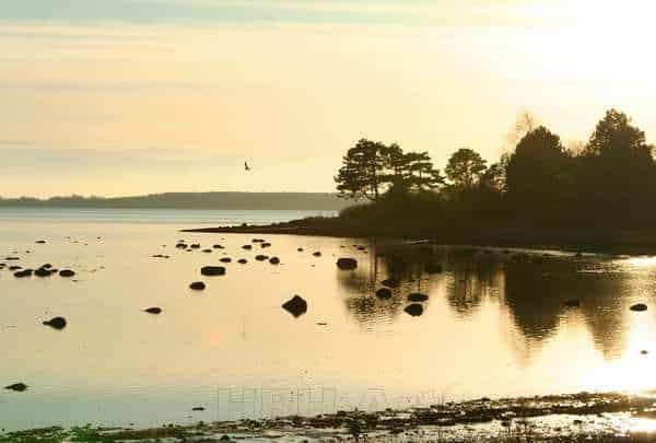 Foto af fjorden lige til at hænge på væggen