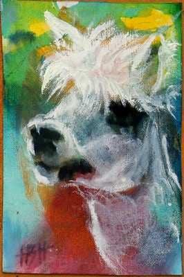 artmoney alpaca hoved