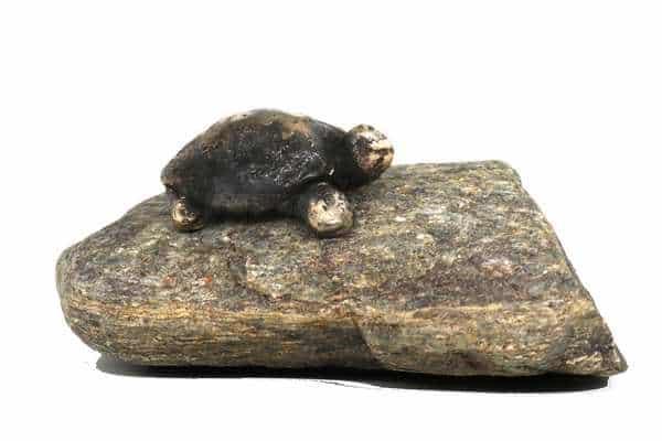 Skildpadde i massiv bronze - unika skulptur